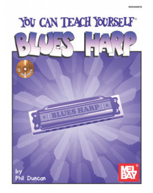 You Can Teach Yourself Blues