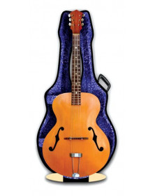 3D Card Archtop Guitar